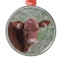 Baby Brown Cow face Metal Ornament