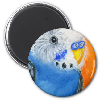 Baby Budgie Magnet