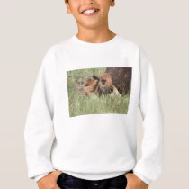 Baby Buffalo Kids Sweatshirt