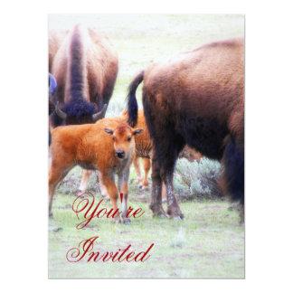 "Baby Buffalo - Save the Date Party Invitation 6.5"" X 8.75"" Invitation Card"