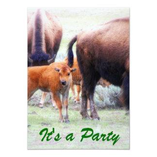 "Baby Buffalo - Save the Date Party Invitation 4.5"" X 6.25"" Invitation Card"