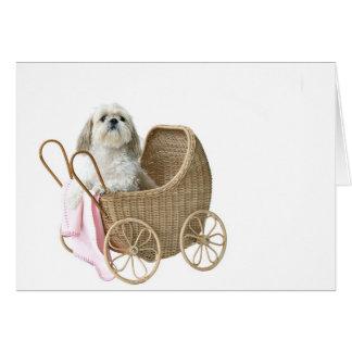 Baby buggy Shih Tzu Greeting Cards