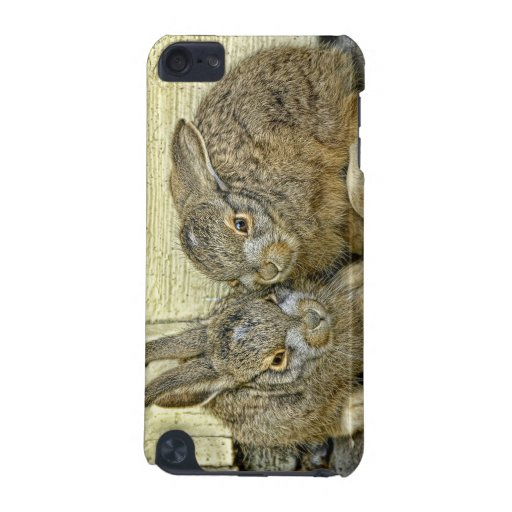 Baby Bunnies Wild iPod Touch 5G Cases