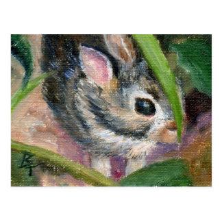 Baby Bunny Hiding Postcard