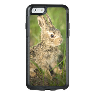 Baby Bunny In Grass OtterBox iPhone 6/6s Case