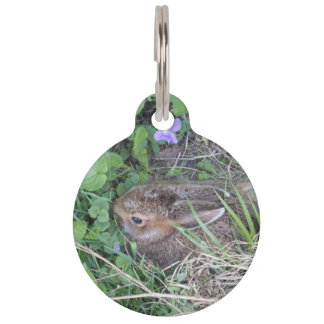 Baby Bunny in Nest Pet Tags