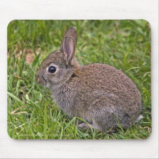 Baby Bunny Mousemat Mouse Pad