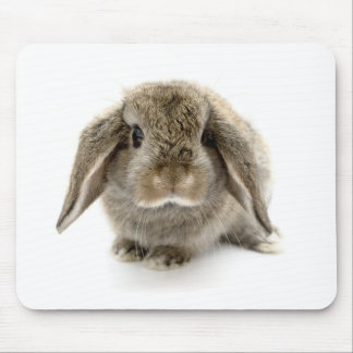 Baby Bunny Mouse Pad