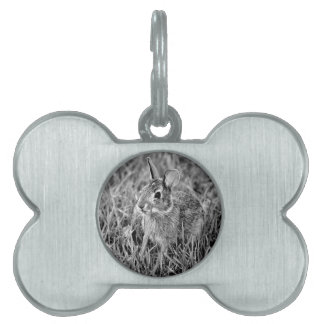 Baby Bunny Pet ID Tag