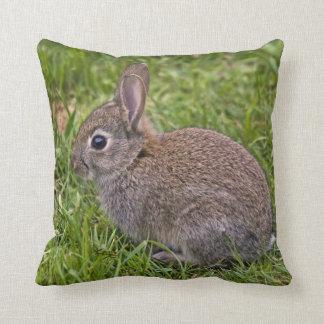 Baby Bunny Pillow