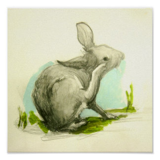 Baby Bunny Scratching His Ear Poster