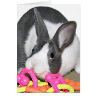 Baby bunny with baby toy card