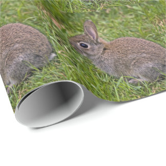 Baby Bunny Wrapping Paper