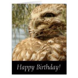 Baby Burrowing Owl Bird Wildlife Animal Card