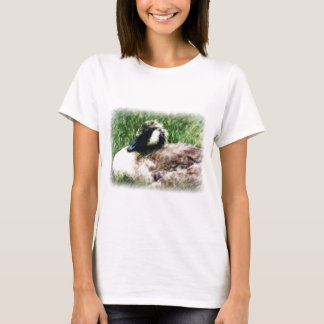 Baby Canadian Goose Photo Sketch T-Shirt