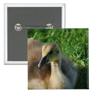 Baby Canadian Goose Pin