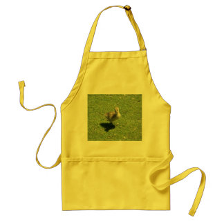 Baby Candian Goose Adult Apron