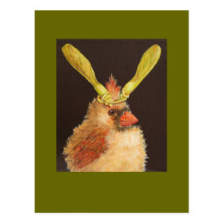 baby cardinal with maple seed hat postcard