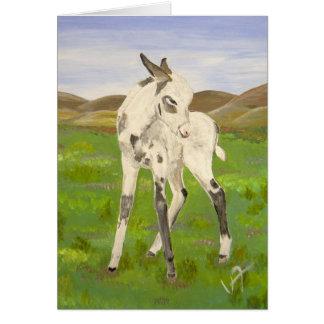 Baby Carrera donkey! Card