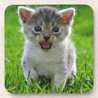 Baby Cat Drink Coasters