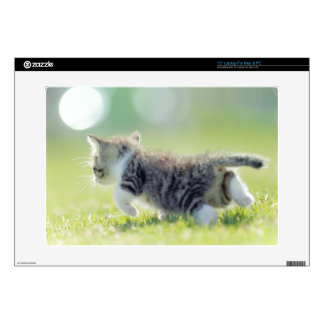 Baby cat running on grass field. skins for laptops