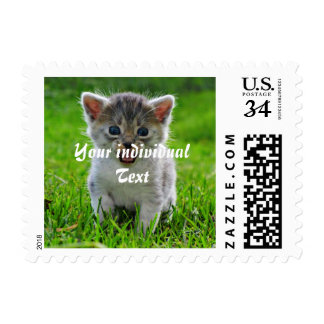 Baby cat stamps