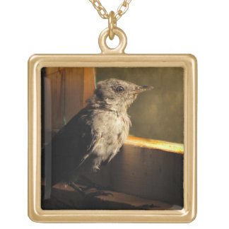 Baby Catbird Gold Plated Necklace