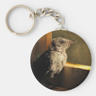Baby Catbird Key Chain