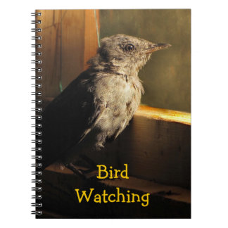 Baby Catbird Notebook