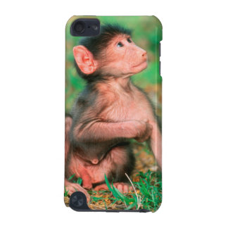 Baby Chacma Baboon (Papio Ursinus) iPod Touch (5th Generation) Cover