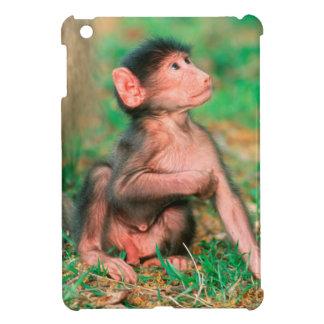 Baby Chacma Baboon (Papio Ursinus) iPad Mini Cases