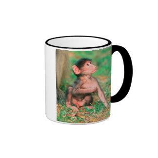 Baby Chacma Baboon (Papio Ursinus) Mugs