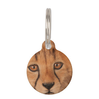 Baby Cheetah Pet Tag