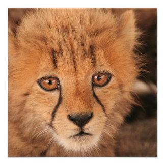 Baby Cheetah Invitation