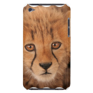 Baby Cheetah iTouch Case