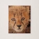 Baby Cheetah Puzzle