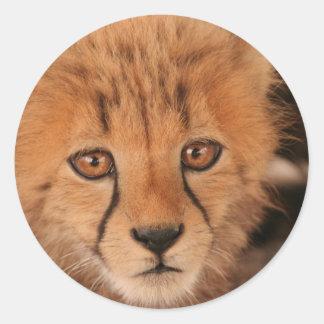 Baby Cheetah Stickers