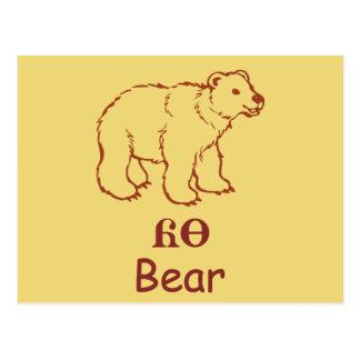 Baby Cherokee Bear Postcard