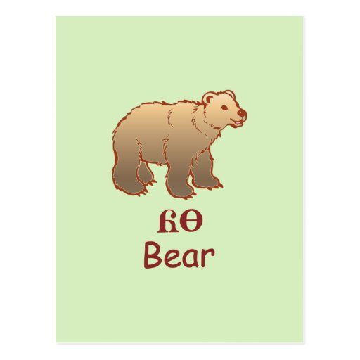 Baby Cherokee Bear Postcards