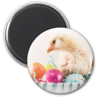 Baby Chick in Easter Basket Magnet