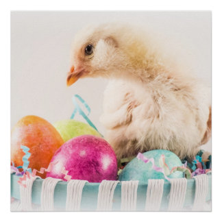 Baby Chick in Easter Basket Poster