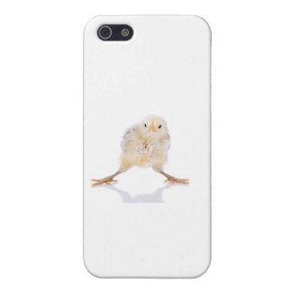Baby chick iPhone SE/5/5s case