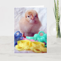 Baby Chick, Perfect For Baby Shower Invitation