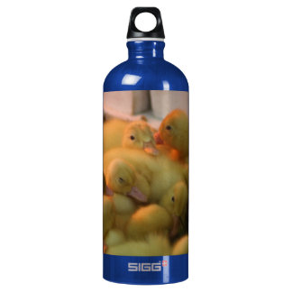 Baby Chick Pile Aluminum Water Bottle