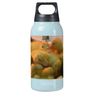 Baby Chick Pile Insulated Water Bottle