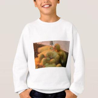Baby Chick Pile Sweatshirt