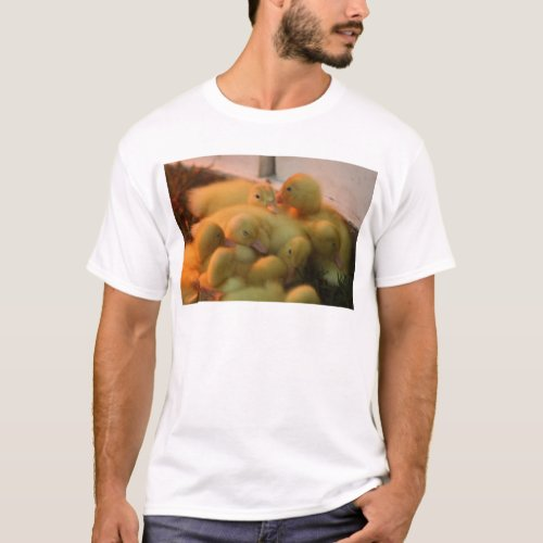 Baby Chick Pile T-Shirt