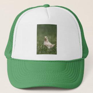 Baby Chick Trucker Hat