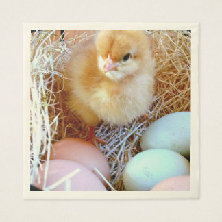 Baby Chick with Colored Eggs Paper Lunch Napkins