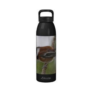 Baby Chickadee Photo Water Bottles